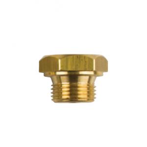 02003tp General Motors Brass Plug