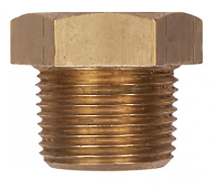 PP1000B Brass Plug
