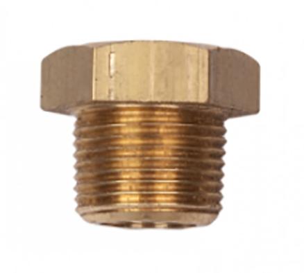 PP750B Brass Plug