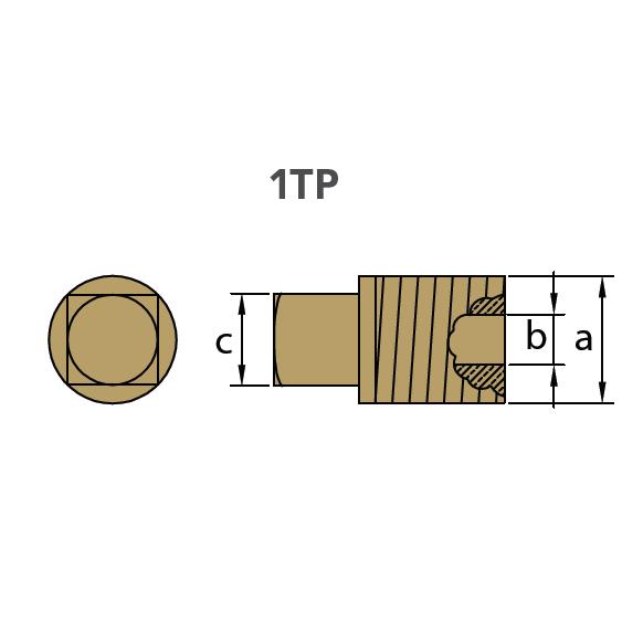 1TP Plug Drawing